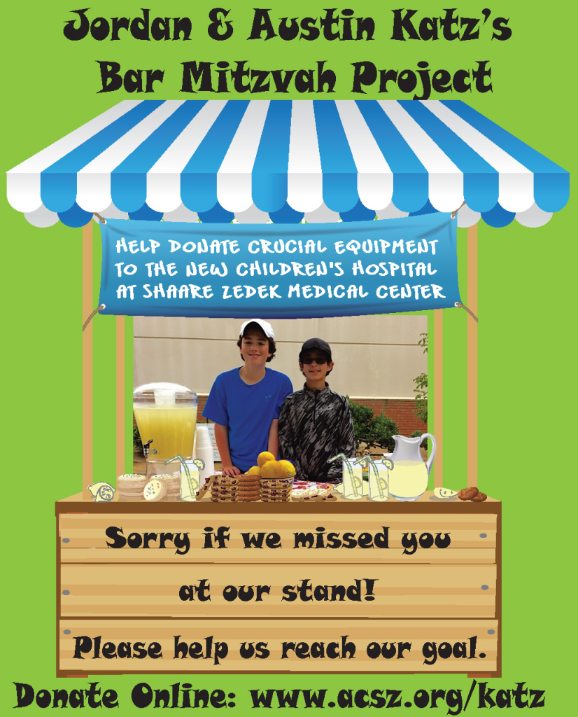 Katz Mitzvah Project after